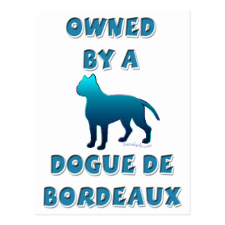 Owned by a Dogue de Bordeaux Postcard
