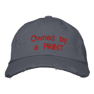 Owned by a PAINT Embroidered Hats