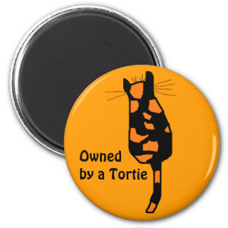 Owned by a Tortie cat magnets