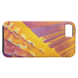 Oxalic Acid Crystals iPhone 5 Covers
