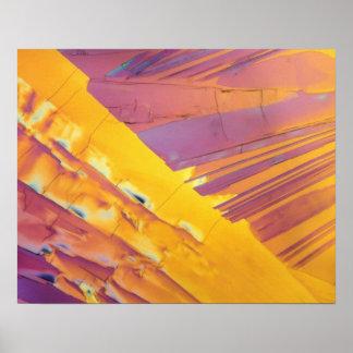 Oxalic Acid Crystals Poster