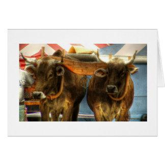 Oxen Team at Sandwich Fair: Card