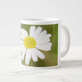 Oxeye Daisy Large Coffee Mug