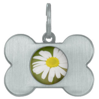 Oxeye Daisy Pet Name Tag