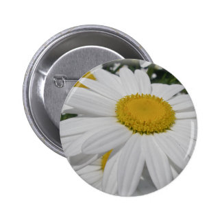 Oxeye Daisy Wildflower Floral Items 6 Cm Round Badge