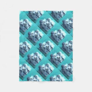 Oyster Mushrooms in Blue Fleece Blanket