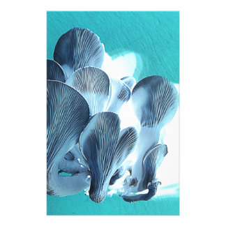 Oyster Mushrooms in Blue Stationery