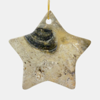 Oysters Ceramic Ornament