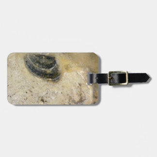 Oysters Luggage Tag