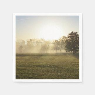 Ozarks Morning Fog Paper Serviettes