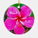 P0000104_lzn, bula, fiji christmas ornaments
