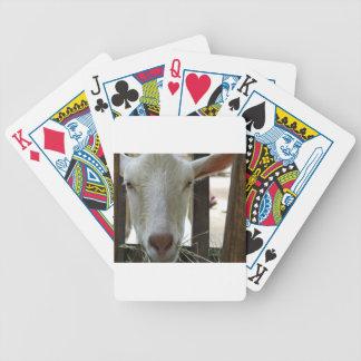 P1100078.JPG BICYCLE PLAYING CARDS