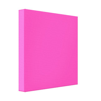 P25 Fancy That Magenta! Pink Color Canvas Print