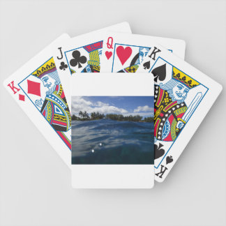 P6270085.JPG BICYCLE PLAYING CARDS