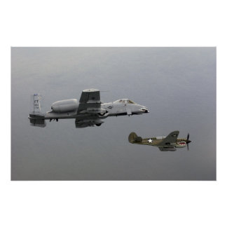 P-40 Tomahawk and A-10 Warthog Poster
