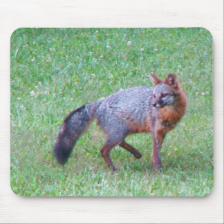 PA Grey Fox Mouse Pad