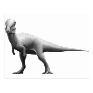 Pachycephalosaurus Postcard