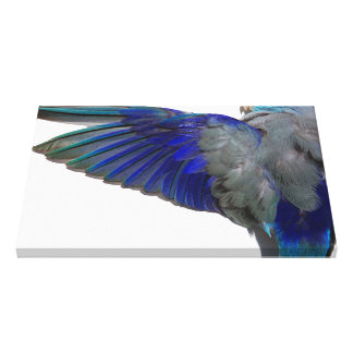 Pacific Blue Parrotlet Aviary Wings Wall Art