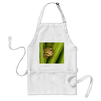 Pacific Chorus Frog Aprons