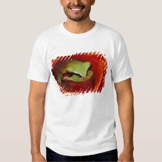 Pacific Chorus frog in dahlia. Credit as: T-shirt