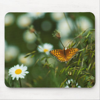 Pacific Fritillary Butterfly Mouse Pad
