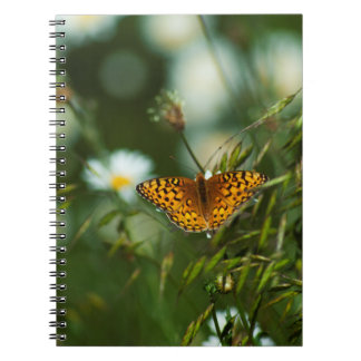 Pacific Fritillary Butterfly Notebook