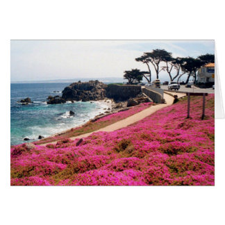 Pacific Grove-Monterey Calif Card