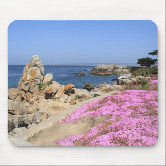 Pacific Grove Mouse Pad