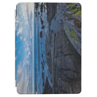 Pacific ocean and rocky shore iPad air cover