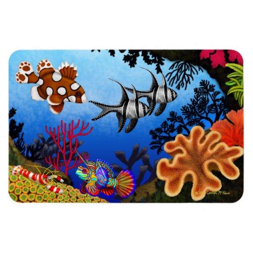 Pacific Ocean Coral Reef Flexi Magnet