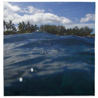 Pacific Ocean Maui Napkin