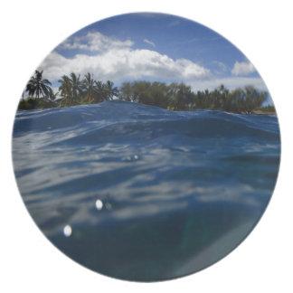 Pacific Ocean Maui Plate