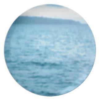 pacific pelican plate