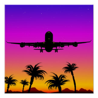 Pacific Plane Poster