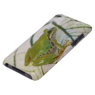 Pacific tree frog on flowers in our garden, iPod Case-Mate case
