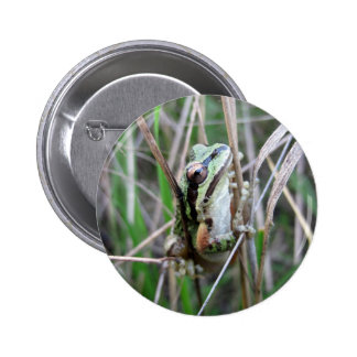 Pacific Treefrog or Chorus Frog Button