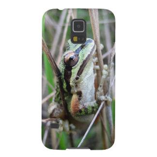 Pacific Treefrog or Chorus Frog Samsung Galaxy Nexus Cases