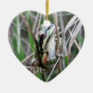 Pacific Treefrog or Chorus Frog Ceramic Heart Decoration