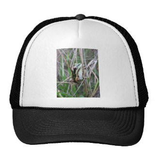 Pacific Treefrog or Chorus Frog Trucker Hats