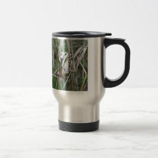 Pacific Treefrog or Chorus Frog Mug