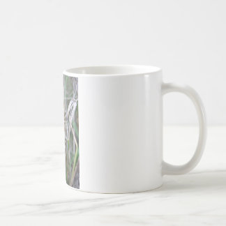 Pacific Treefrog or Chorus Frog Coffee Mug