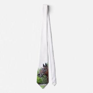Paddock Horse Tie