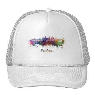 Padua skyline in watercolor cap