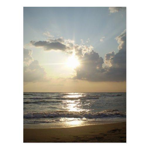 Paestum Beach Postcard