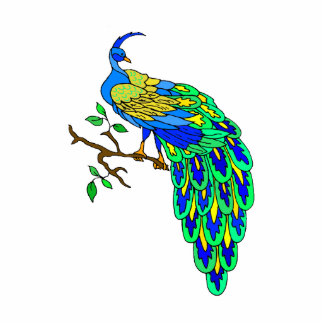 Pagiel Peacock Photo Sculptures