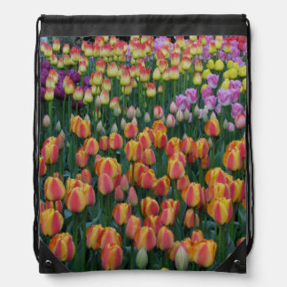 Paint Box Drawstring Bag
