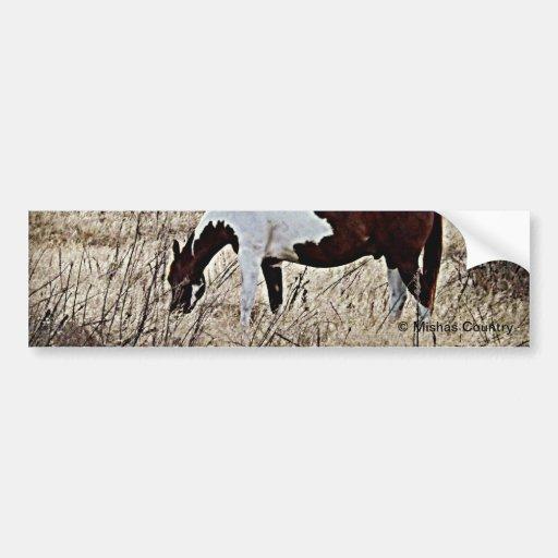 Paint Horse Bumper Stickers