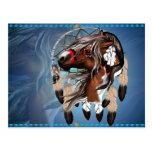 Paint Horse Dreamcatcher Postcard