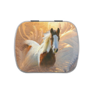 Paint Horse Gold Candy Tin