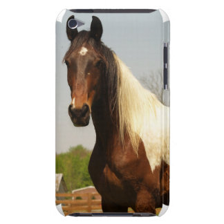 Paint Horse iTouch Case